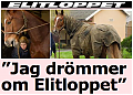 Elitloppet